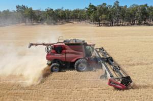 Read more about the article Clarín Rural destaca la utilidad de las destructoras de semillas y de los cultivos de cobertura en nota a Maleza en Foco